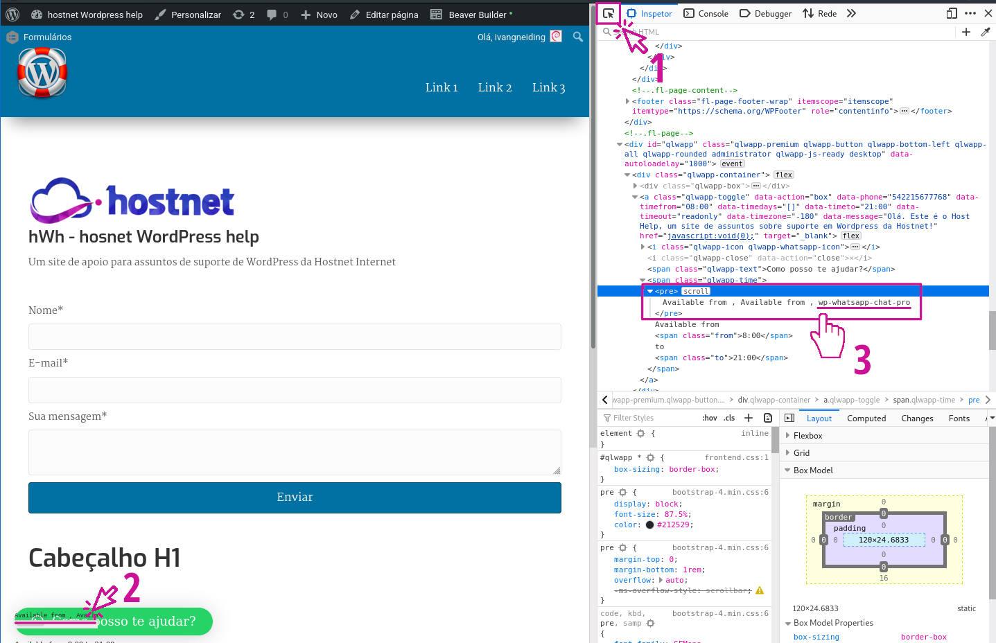 Capturando dominio para uso com hook no wordpress